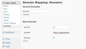 WordPress MultiSite - Mapping a domain with WordPress MU Domain Mapping